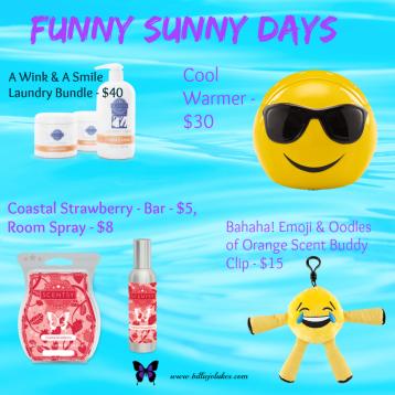 FUNNY SUNNY DAYS